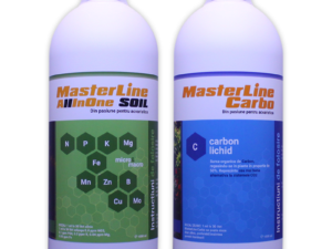 Set MasterLine All In One Soil si Carbo 1000 ml