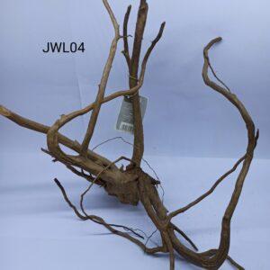 Radacina Finger Wood unicata JWL04