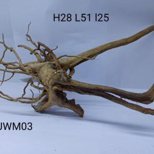 Radacina Finger Wood unicata JWM03