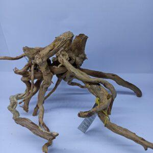 Radacina Finger Wood unicata JWM05