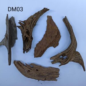 Set 5 buc Drift Wood DM03 19-23cm