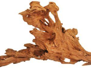 Radacina Mangrove 20-35cm D108